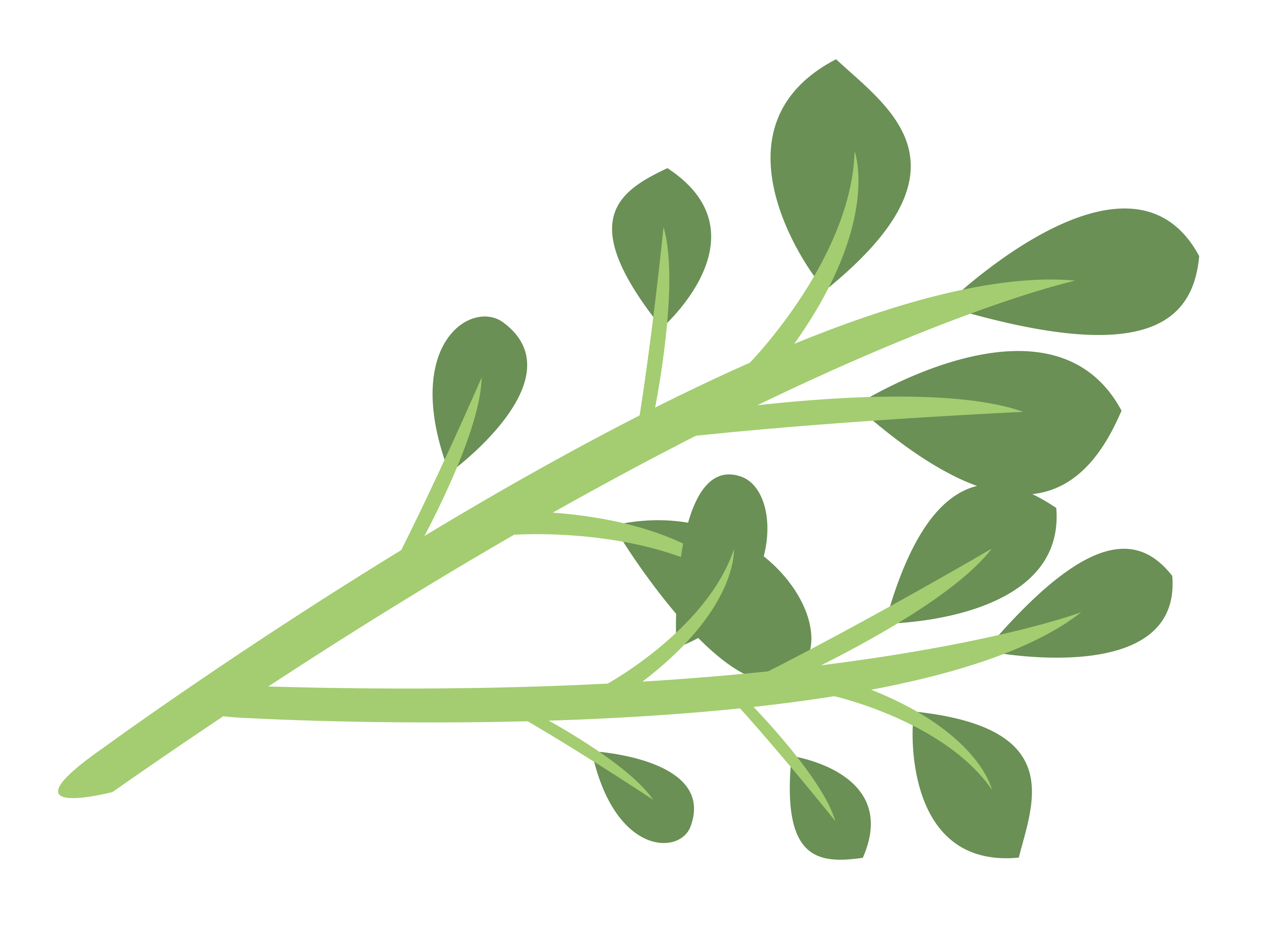 View Thyme.jpg Clipart - Free Nutrition and Healthy Food Clipart