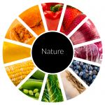Food_Wheel_1.jpg - Nature, food, fruit, vegetables, co