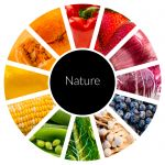 Food_Wheel_2.jpg - Nature, food, fruit, vegetables, co