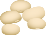 Lima_Beans.png - Lima, Beans